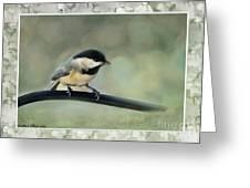 Chickadee With Frame  Greeting Card