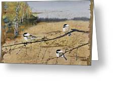 Chickadees And A Row Of Birch Trees Greeting Card