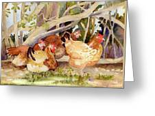Chickens In The Hedge II Greeting Card