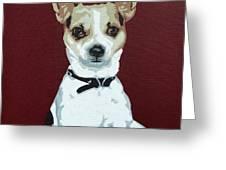 Chihuahua 2 Greeting Card by Slade Roberts