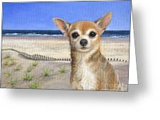 Chihuahua At Sea Isle City New Jersey Greeting Card