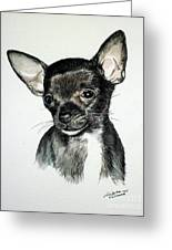 Chihuahua Black 2 Greeting Card