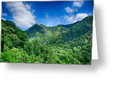 Chimney Tops Mountain In Great Smoky Mountains  Greeting Card