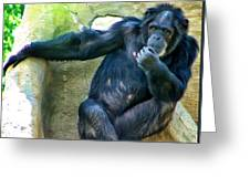 Chimp 1 Greeting Card