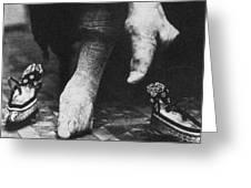 China: Lily Foot, C1900 Greeting Card