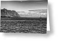 Chinaman's Hat Island From A Different Angle Greeting Card
