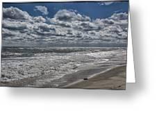 Chincoteague Beach Greeting Card