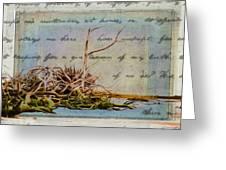Chincoteague Driftoods Greeting Card
