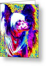 Chinese Crested Dog 20130125v1 Greeting Card by Wingsdomain Art and Photography