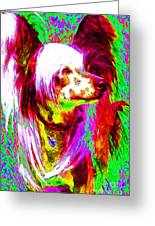 Chinese Crested Dog 20130125v2 Greeting Card