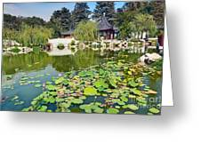 Chinese Garden - Huntington Library. Greeting Card