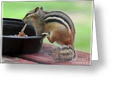 Chipmunk And Jam Greeting Card