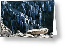 Chiricahua Pinnacles D Greeting Card