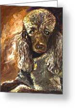 Chocolate Poodle Greeting Card by Susan A Becker