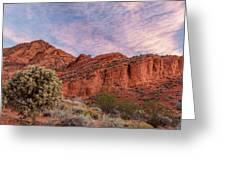 Cholla Cactus And Red Rocks At Sunrise Greeting Card