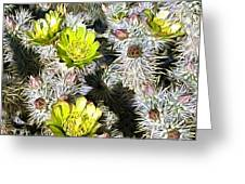 Cholla Flowers Greeting Card
