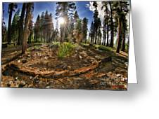 Chop Up Log Greeting Card