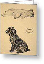 Chow And Spaniel, 1930, Illustrations Greeting Card by Cecil Charles Windsor Aldin
