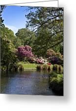 Christchurch Botanic Gardens New Zealand Greeting Card