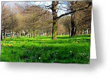 Christchurch Gardens Greeting Card