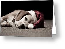 Christmas Beagle Greeting Card by Paulina Szajek