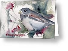 Christmas Birds 01 Greeting Card