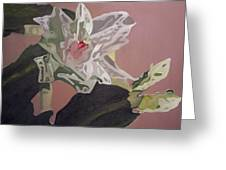 Christmas Bloom Greeting Card