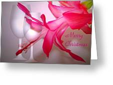 Christmas Cactus And Two Glasses - Merry Christmas Greeting Card