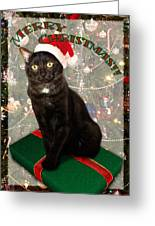 Christmas Cat Greeting Card