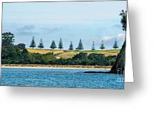 Christmas In A Row.nz Greeting Card