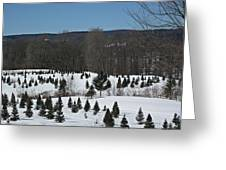 Christmas In March Greeting Card