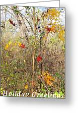 Christmas In Nature Greeting Card