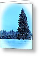 Christmas In The Valley Greeting Card
