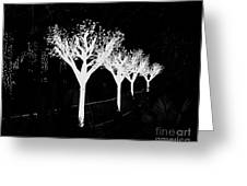 Christmas Lights In Black And White Greeting Card