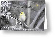 Christmas Peace Greeting Card