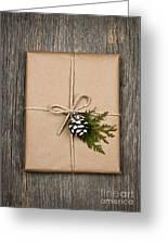 Christmas Present  Greeting Card by Elena Elisseeva
