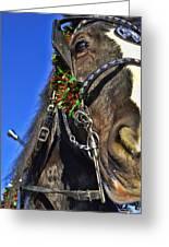 Christmas Shire Greeting Card