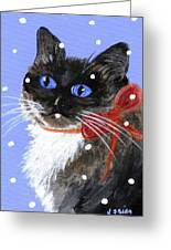 Christmas Siamese Greeting Card