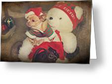Christmas Zoe Greeting Card by Laurie Search