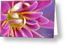 Chrysanthemum Painting Greeting Card