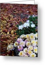 Chrysanthemums In The Forest Greeting Card by Ioana Ciurariu