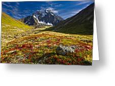 Chugach Autumn Greeting Card