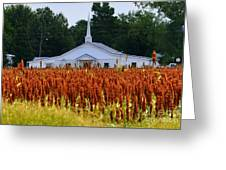 Church In The Fields Greeting Card