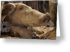 Church Pig Greeting Card