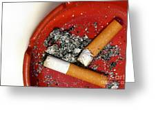 Cigarette Butts Greeting Card