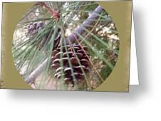 Circle Of Cones  Greeting Card