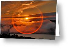 Circle Round The Sun Greeting Card by Steven Ainsworth