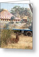 circus circus 2 - A vintage circus wagon with african paint and llama camel  Greeting Card