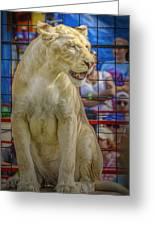 Circus Lion Greeting Card