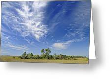 Cirrus Clouds  Greeting Card